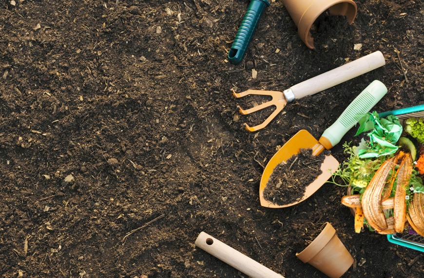 What to Put In the Compost