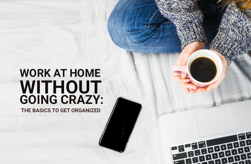 Work At Home without Going Crazy: The Basics to Get Organized